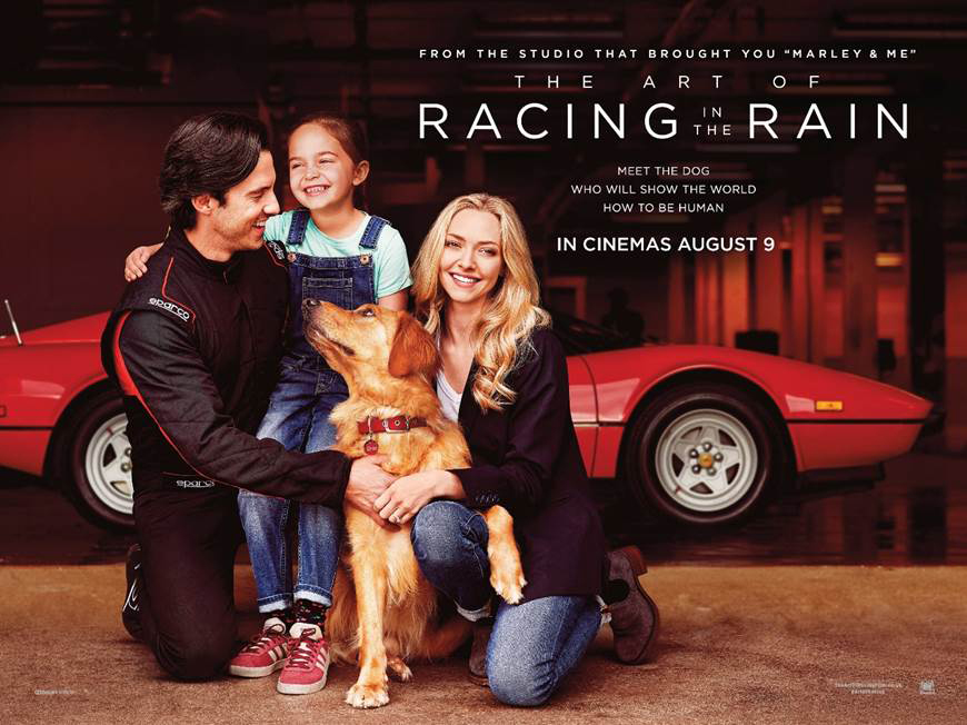 %22The+Art+of+Racing+in+the+Rain%22+Review