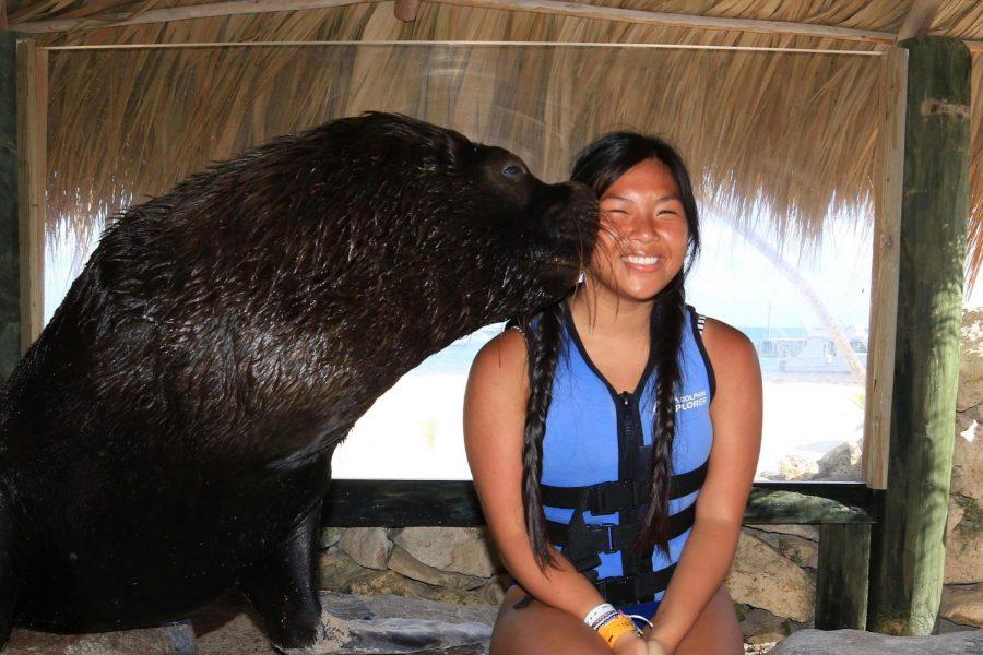 Saint Joe Students Travel the World: Punta Cana