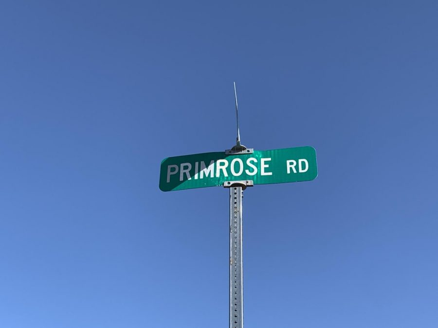 Primrose Rd.