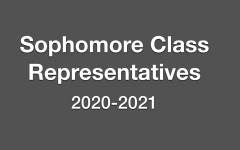 Potential Sophomore Representatives Seek Votes