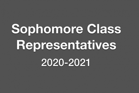 Potential Sophomore Representatives Seek Votes