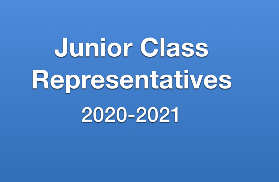 Candidates for Junior Representatives Campaigning for Election