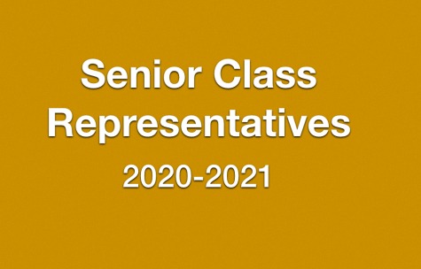 Seniors Vie for Class Representative