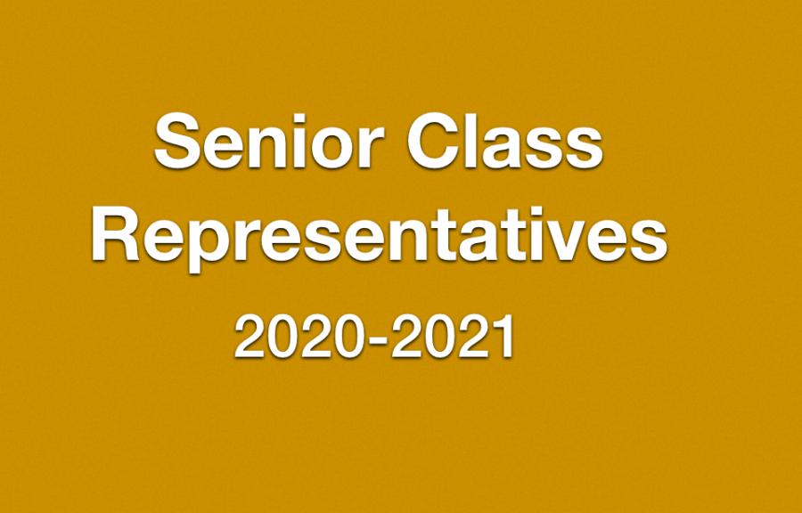 Seniors Vie for Class Representative