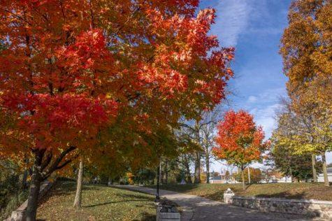 Michianas Top Five Fall Activities